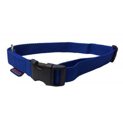 Collar single colour plastic buckle
