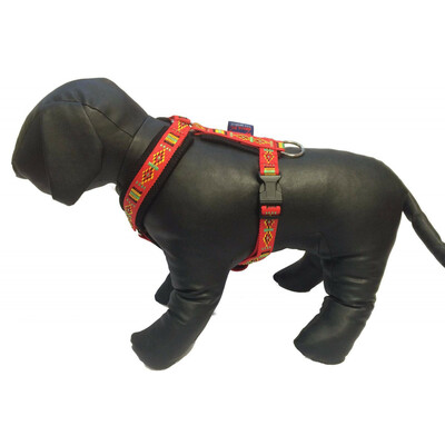 Padded harness COLORADO