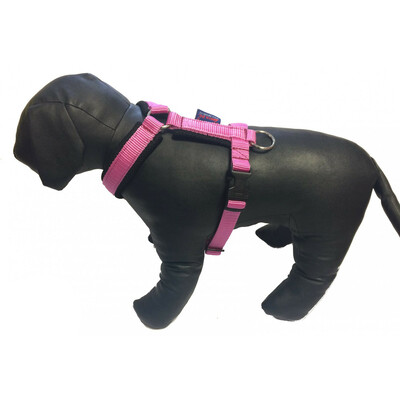 Padded harness Single color